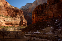 Morning Splits Zion Canyon